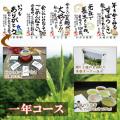 【敬老の日特別ギフト】茶畑オーナー権(一年コース)