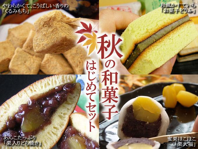 [秋限定]秋の和菓子はじめてセット