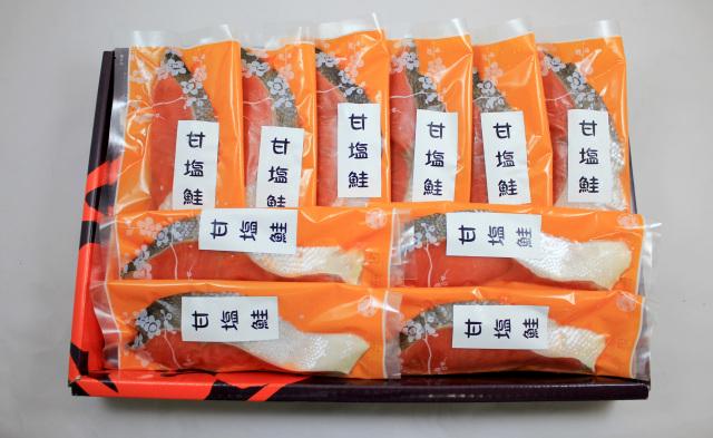 E-set さかな倶楽部 ETCA595