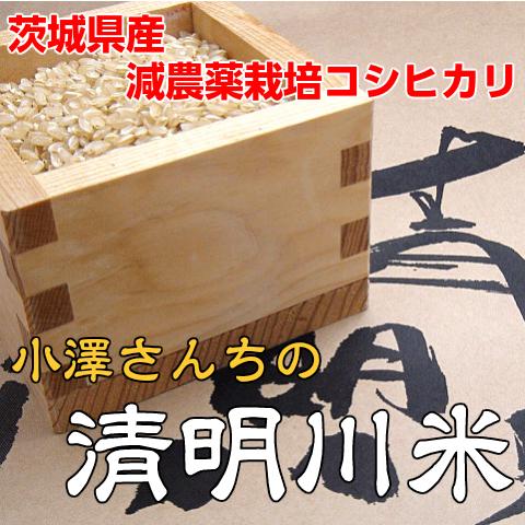 減農薬栽培コシヒカリ清明川コシヒカリ