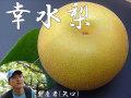 ������̵���� ��������� ����]��5kg(��) L�ʾ太�Ϥ�