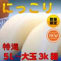 特選新高or新興梨(完熟)色、球揃えを一つひとつ丁寧に確認