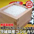 関口さんちの無農薬栽培コシヒカリ『たっしゃか米』コシヒカリ5kg(白米)放射能検査済(不検出)