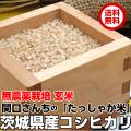 http://image.rakuten.co.jp/oishiine-ibaraki/cabinet/p_kome-sekiguti/sekiguchi-g01-480.jpg