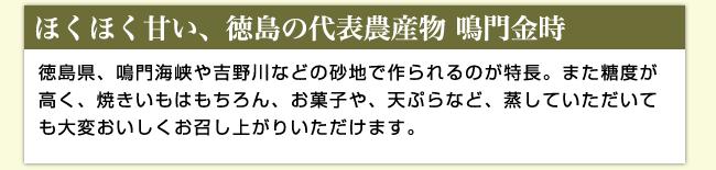 【ほくほく甘い、徳島の代表農作物 鳴門金時】徳島県、鳴門海峡や吉野川などの砂地で作られるのが特徴。また糖度が高く、焼きいもはもちろん、お菓子や、天ぷらなど、蒸していただいても大変おいしくお召し上がりいただけます。