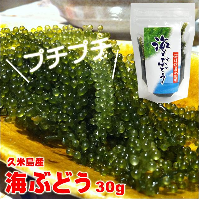 海ぶどう久米島産 30g