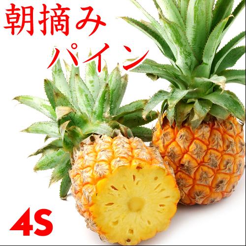 ≪朝摘みだからおいしい≫沖縄産 スナックパイン 4S