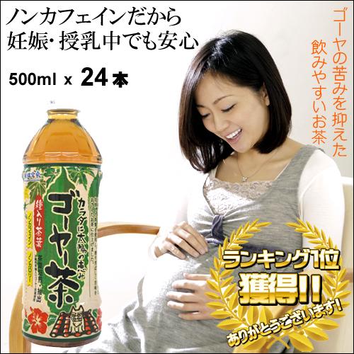 沖縄宝島 ゴーヤ茶 500ml × 24本