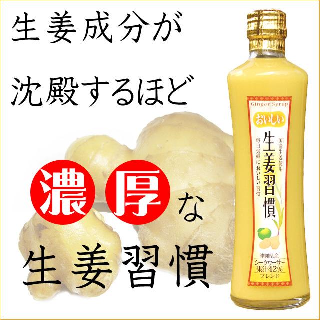 沖縄宝島 おいしい 生姜習慣 300ml × 12本