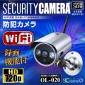 屋外 強力赤外線LEDライト 暗視カメラ 防犯カメラ (OL-020)