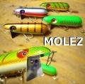 ジョニーエース 「MOLEZ モールズ」