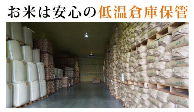 ★ 新米 ★ 28年度 コシヒカリ 玄米:30kg 特別栽培米! 福井県認定エコファーマー!【ポイント5倍】