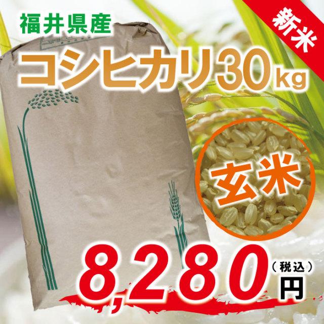 ★ 新米 ★ 28年度 コシヒカリ 玄米:30kg 福井県認定エコファーマー!【ポイント5倍】