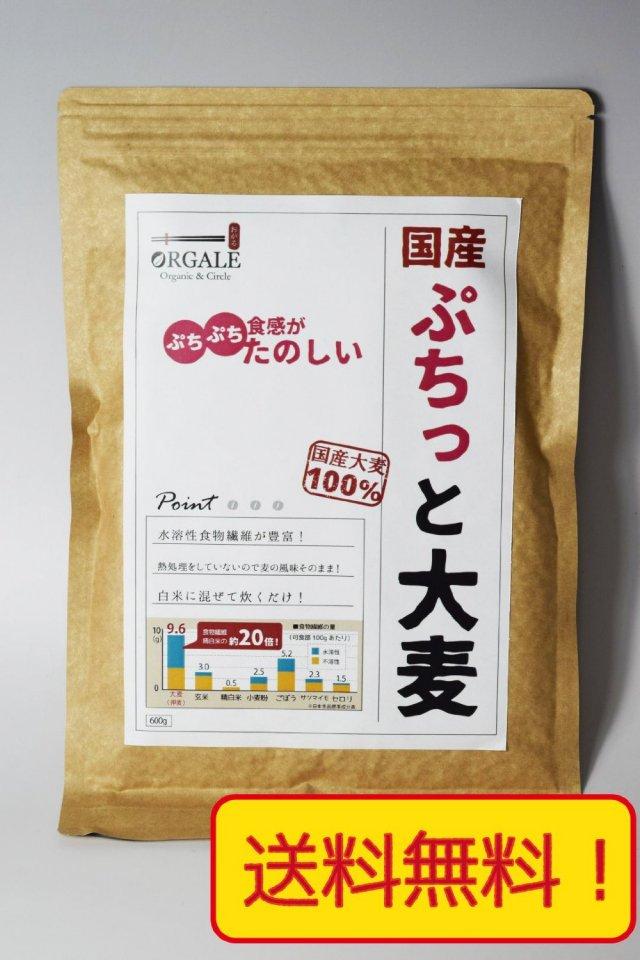 国産 ぷちっと大麦 九州産100% 600g アルミ真空パッケージ、脱酸素材入りで新鮮なままお届け! チャック付で保存に便利!