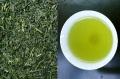 有機特上煎茶【オーガニックギフト】