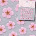 【春ネイル】【Pieadra64133】ピアドラ/押し花ネイルシール2ピンク(廃盤の為、在庫限り)