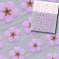 【春ネイル】【Pieadra64137】ピアドラ/押し花ネイルシール6パープル(廃盤の為、在庫限り)