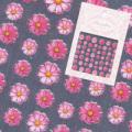【春ネイル】【pieadra74531】ピアドラ/プリマベーラピンク(廃盤の為、在庫限り)