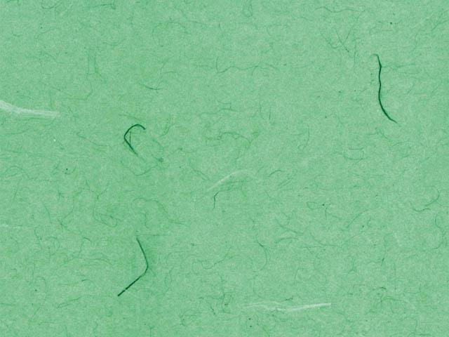 フウビ 緑