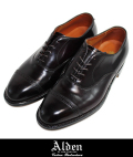 Alden オールデン 9015  PERFORATED TOE CAP BLK