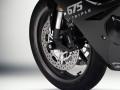 Rizoma/リゾマ フロントホイールプロテクション Triumph DAYTONA