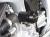 metisse ダンパー内蔵クラッシュパッド X-Pad K1300R/K1200R