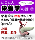 2011年12月号「とことんペットの栄養学の話〜臓器の構造と働き(その3)」