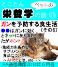 2014年6月号「ペットの栄養学 ガンを予防する食生活(その6)「免疫力を高めるサプリメントや食品について」