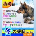 犬猫の薬膳冬2015基礎編