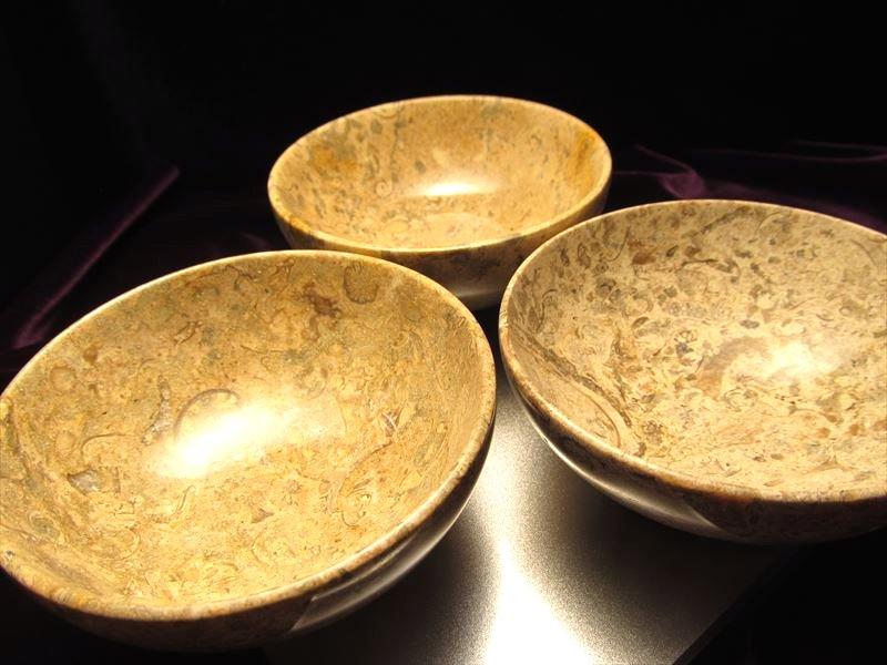 フォッシル貝の化石大理石