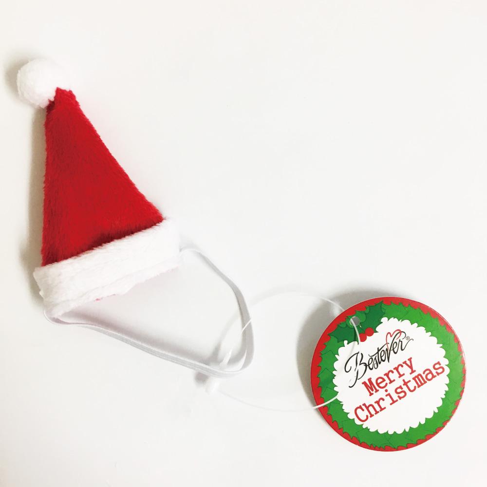 プレミアムパピー サンタの帽子