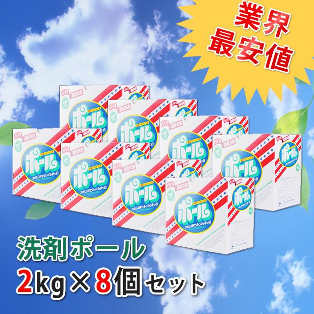 [送料無料] [代引手数料無料] 洗剤ポール「1箱(2kg)×8個」1ケース