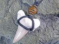 幸運のお守り★サメ歯化石チョーカー(ネックレス)
