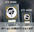 ATZ-8498B フリーセレクション/表彰楯Bサイズ180×140mm【表彰グッズ】