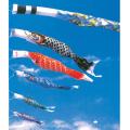金吹雪鯉セット 6m 6点セット(鯉のぼりセット)【フジサン鯉】
