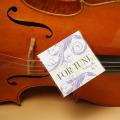 FOR-TUNE チェロ弦 A線 D線 G線 C線 音楽雑貨 音楽グッズ 弦楽器