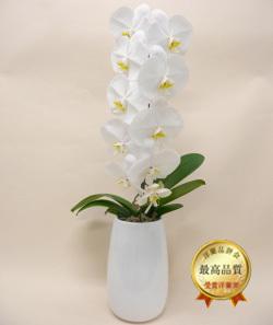 ホワイト胡蝶蘭ティアドロップ