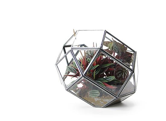"""Polyhedron Terrarium """"S""""ポリへドロンテラリウム """"S"""""""