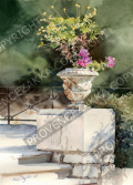 プロヴァンス風景絵画(Nice ニース, シャトー城跡公園に咲く花)PT_MRT_08