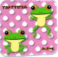 カエル博士(Dr.Frog)タオルハンカチ アカメアマガエル