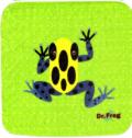 カエル博士(Dr.Frog)タオルハンカチ アイゾメヤドクガエル