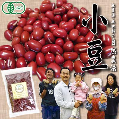 【自然農法・有機JAS認証】北海道十勝産 折笠農場の自然農法小豆 250g