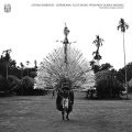 Ragnar Johnson /  Crying Bamboos: Ceremonial Flute Music from New Guinea Madang