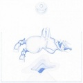 Devendra Banhart / Ape in Pink Marble