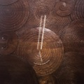 Eyvind Kang & Jessika Kenney / Reverse Tree