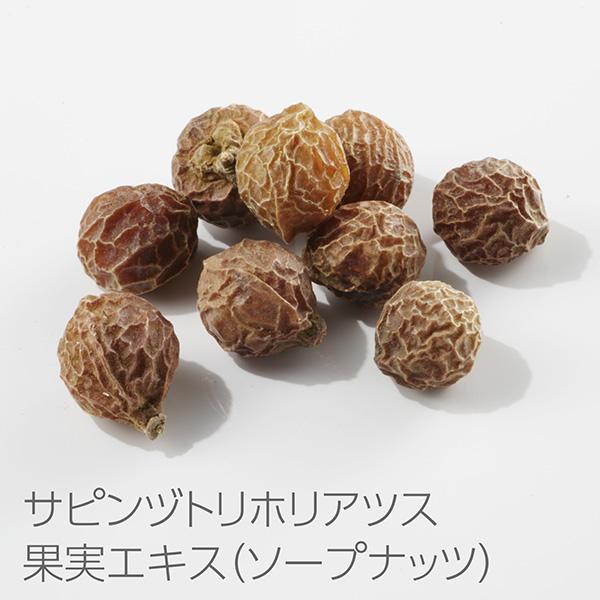 シャンプー:サピンヅトリホリアツス果実エキス(ソープナッツ)