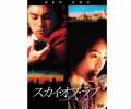 映画 ケン・チュウ スカイ・オブ・ラブ DVD
