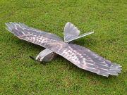 DW Hobby Eagle �⡼����������ס��������դ�