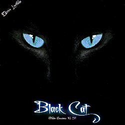 BLACK CAT (Spain) / Studio Sessions 16 91