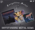 V.A. / Forgotten Metal - Outstanding Metal Gems Vol. 17